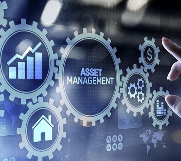 Analisi Digital Asset